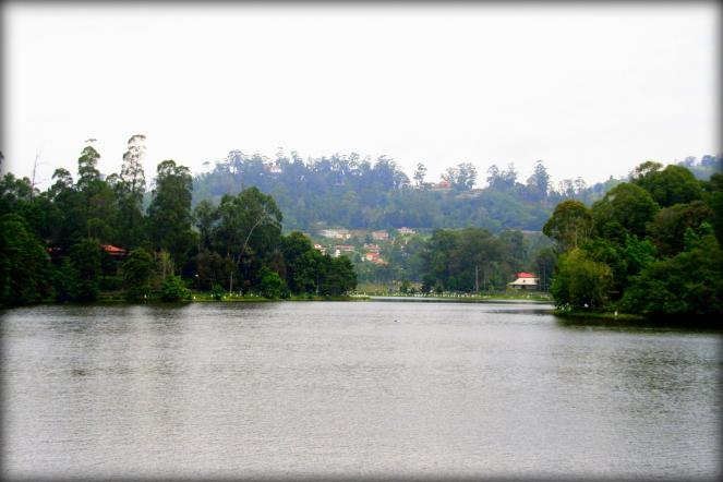 The Kodaikanal lake