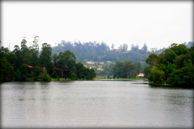 The Kodaikanal lake